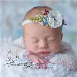 Lynette Busche Newborn Photographer - profile picture