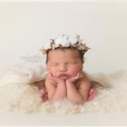 Newborn Photographer - South-Carolina, United-States - Fawn Farner