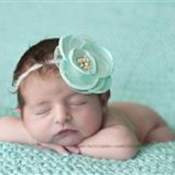 Lauren Mallard Newborn Photographer - profile picture