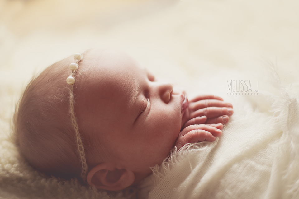 Melissa j photography colorado springs colorado united states newbornphotography com