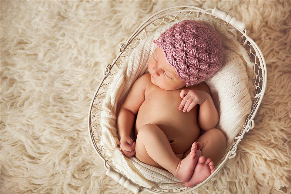 Newborn photographer annie savard filion