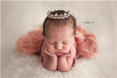 Erin McCoy Newborn Photographer - profile picture